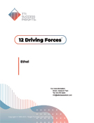 12 Driving Forces assessment, 12 driving forces assessment, 12 Driving Forces report, 12 driving forces report, TTI Motivators assessment, TTI motivators assessments, TTI DISC assessments