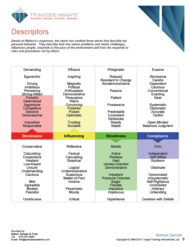 Executive online assessment page sample - CEO, CEOs, business owners, business owner, management, senior managers, decision makers, Executive, executive - TTI Performance Systems - TTI DISC assessment